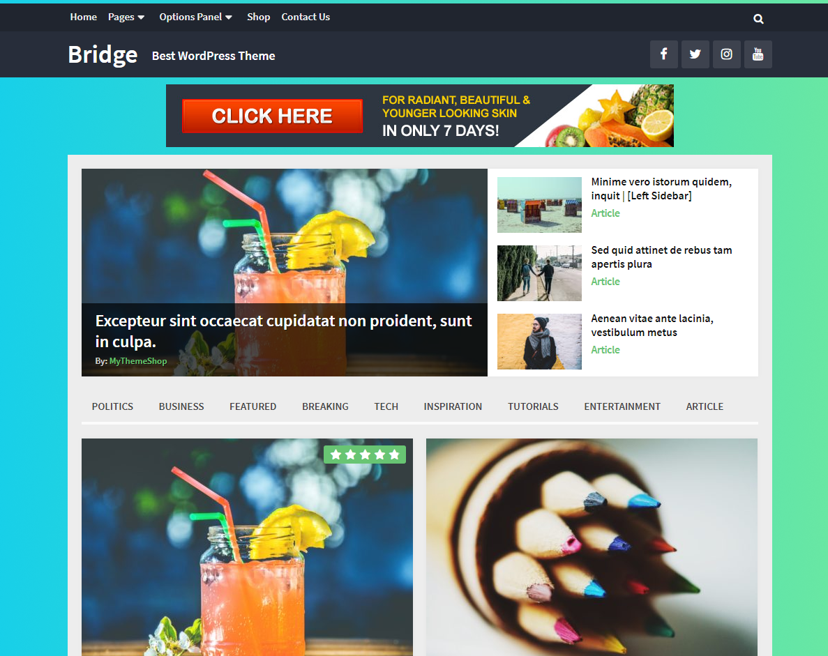 Bridge Multipurpose Magazine WordPress Theme