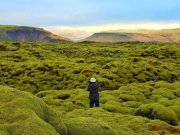 Eldhraun Lava Fields, Iceland