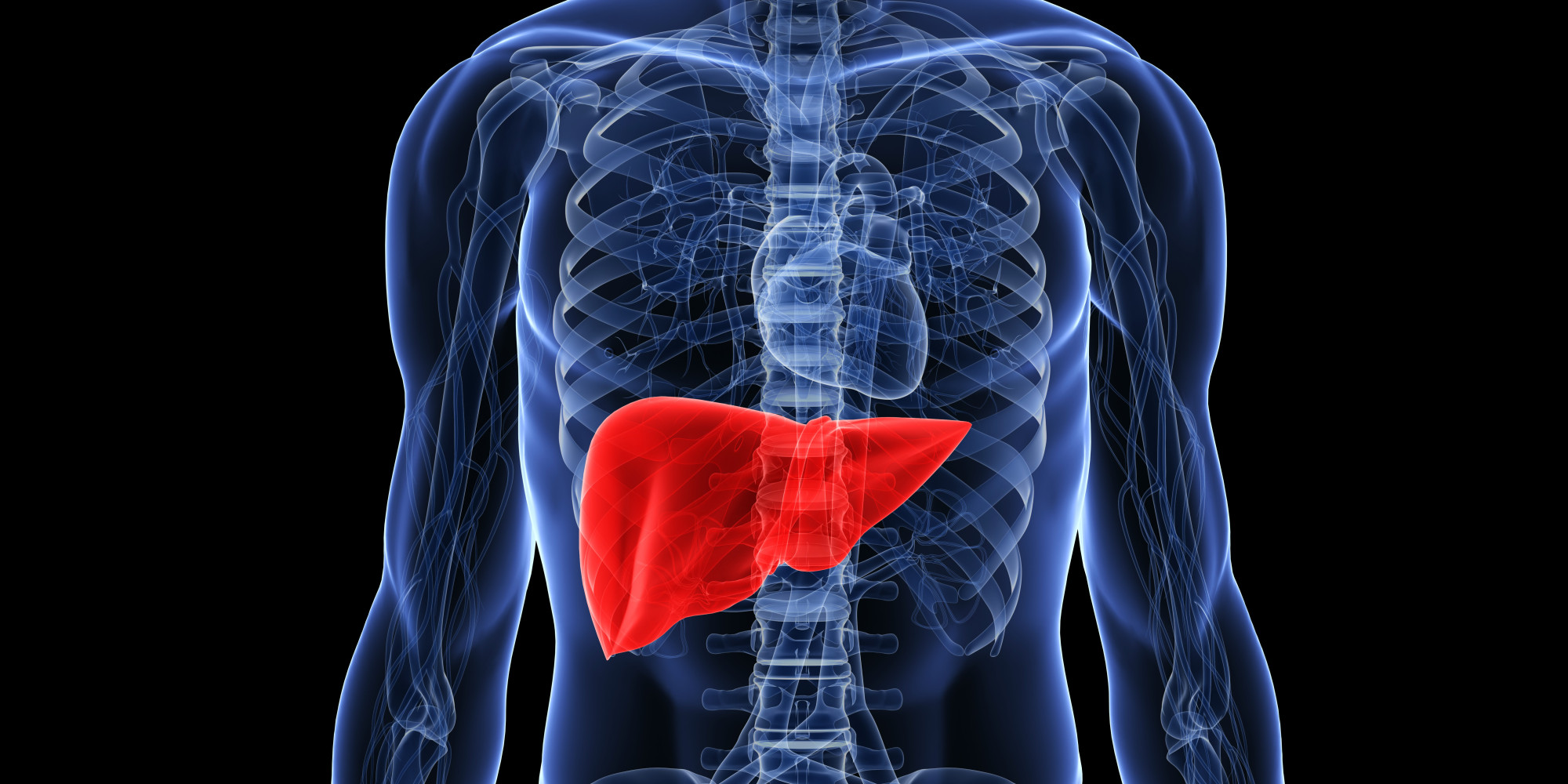 Read more about the article 15 Foods That Cleanse Your Liver Naturally
